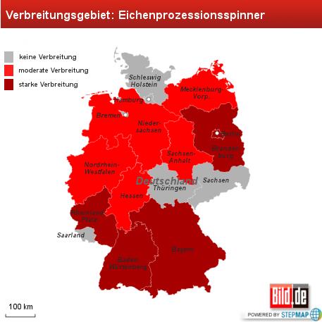 Giftige Raupe in 10 Bundesländern
