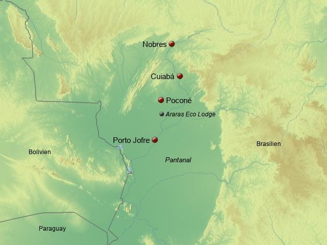 Nördliches Pantanal Araras