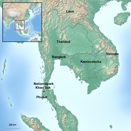 Thailand - 4 Tage Khao Sok Nationalpark